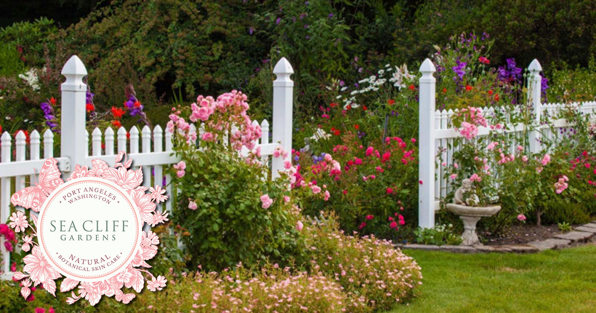 Picture of Sea Cliff Gardens - lawn with fence and flowers